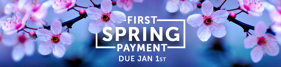 2020-First-Spring-Payment-Banner
