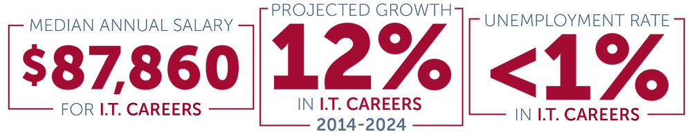 Median Annual Salary for IT Careers $87,860; Projected IT Career Growth: 12%; Unemployment Rate in IT Field is less than 1%;